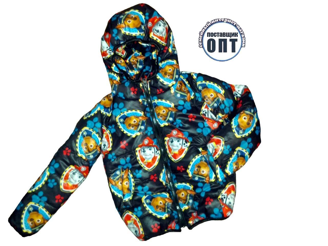 Демисезонная курточка принты для девочки