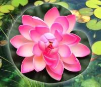 Цветок Лотоса декоративный плавающий 17 х17х5 см(водяная лилия) розовый