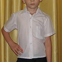 Белая тенниска, рубашка  с коротким рукавом р.110