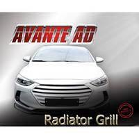 Решетка радиатора - Hyundai Avante MD / Elantra AD (MORRIS CLUB)