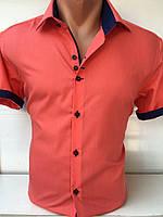 Рубашка мужская баталл. Код: 26258