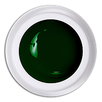 Гель-краска №716 Зеленый Magic, 5 мл.