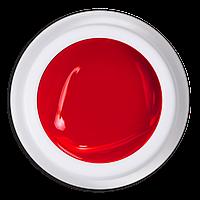 Гель-краска №713 Красный барбарис Magic, 5 мл.
