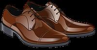 Кожаная мужская обувь