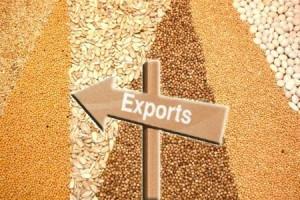 Експорт зерна в України досягає  28,6 млн.т.