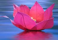 Плавающие фонарики ЛИЛИЯ, диаметр 30 см
