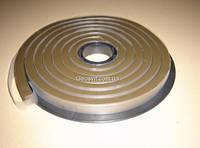Бентонитовый шнур, рулон 5мп, разрез сечения 20х25мм
