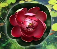 Цветок Лотоса декоративный плавающий 10 х10х5 см(водяная лилия) малиновый