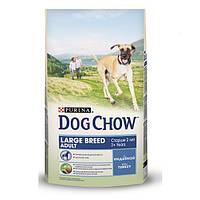 Корм для взрослых собак крупных пород с индейкой Dog Chow Large Breed Adult, 14 кг.