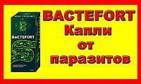 Капли Бактефорт от глистов и паразитов. Bactefort