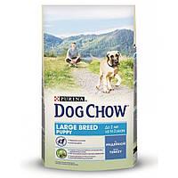 Корм для щенков крупных пород с индейкой Dog Chow Puppy Large Breed, 14 кг