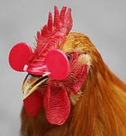 Очки для кур, фазанов, куропаток и перепелов