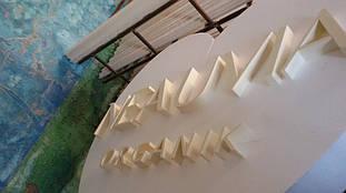 Сердце из пенопласта для презентаций продукта компании NEAUVIA 7