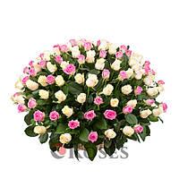 """Корзина """"Весна"""" 125 роз"""