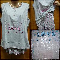 Пижамы с шортами баталы