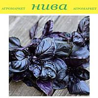 Базилік Фіолетовий насіння базиліка Satimex 10 г