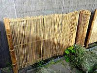 Забор из тростника, 1,5х5м