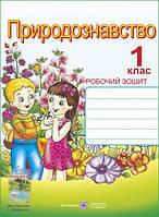 Робочий зошит з природознавства для 1 класу (до підручника Грущинська), автор Жаркова