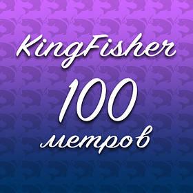 Winner Кingfisher 100m