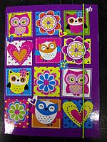 """Папка для тетрадей В5 """"Owl"""", картонная на резинке, 1Вересня"""