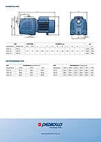 Насос Pedrollo JSWm 2СX (0,75 кВт) - Оригинал (4,2 мᵌ/ч| 50 м.) Италия, фото 3