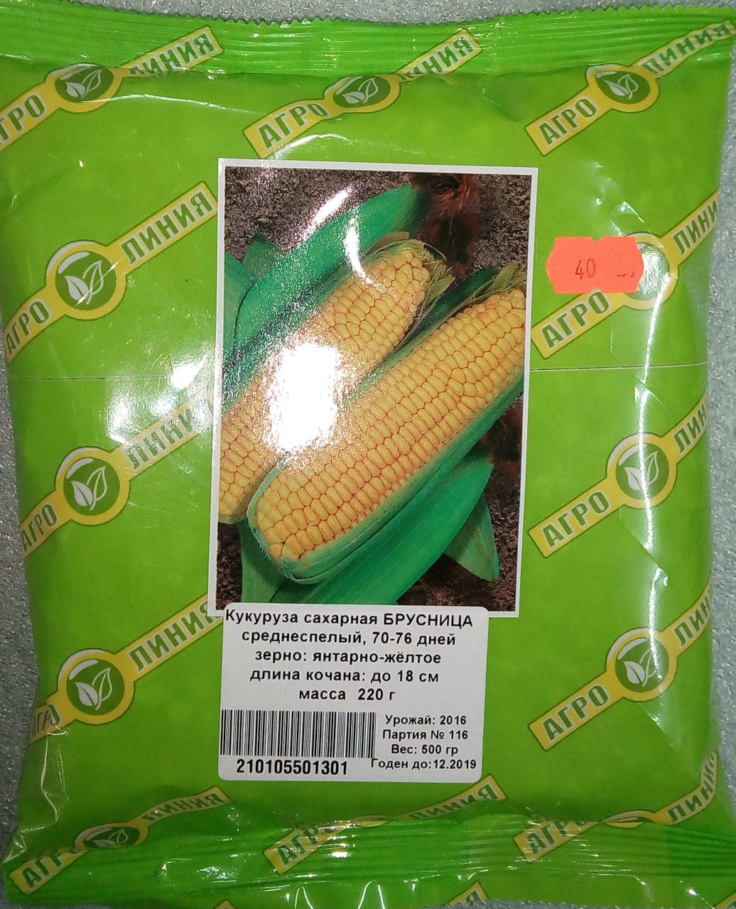 Семена Кукурузы  20 гр сорт Брусниця Цукрова