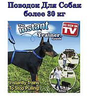 Современный поводок для собак Instant Trainer Leash (Инстент Трейнер)Код: Pangao_Instant Trainer Leash