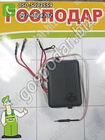 """Терморегулятор цифровой инкубаторный высокоточный """"ЦЫПА"""", фото 1"""