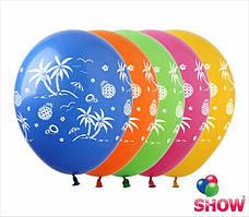 """Воздушные шарики Пальмы и ананасы 12"""" (30 см)  ТМ Show"""