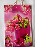 Пакет подарунковий паперовий великий вертикальний 25х39х9 (27-002)
