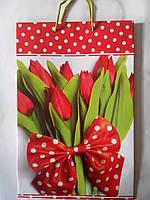 Пакет подарочный бумажный большой вертикальный 25х39х9 (27-006)