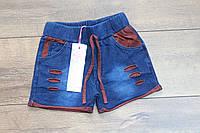 Шорты для девочек ( джинсовый трикотаж ) 4- 6 лет