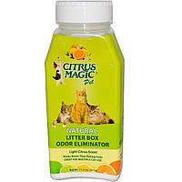 Citrus Magic, Освежитель воздуха для лотка, легкий цитрусовый аромат, 11,2 унции (317 г)
