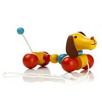 Деревянная игрушка-каталка «Собачка» Д234у Руди