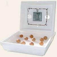Инкубатор для яиц Термия ИБ-60 (теновый), фото 1
