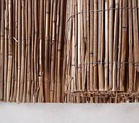 Камышовый забор, 1,6х6м