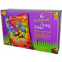 Annies Homegrown, Bunny Graham Friends, Мед, шоколад, шоколадные чипсы, 6 пакетиков, каждый по 1 унции (28 г)