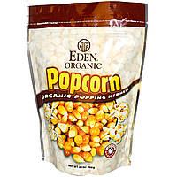 Eden Foods, Натуральные зерна попкорна, 20 унций (566 г)