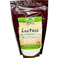 Now Foods, Лактоза, 1 фунт (454 г)