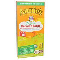 Annies Homegrown, Organic, Bernies Farm Macaroni & Cheese, 6 oz (170 g)