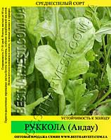 Семена салата Руккола (андау) 0,5кг