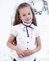 Блузки в школу для девочек 2071к с синей ленточкой