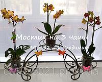 """Подставка для цветов """"Мостик большой на 3 чаши"""", фото 1"""