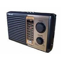 Проигрыватель mp3 Радио Golon RX-F10 переносной