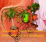 "Подставка для цветов на 3 чаши ""Велосипед-3"", фото 4"