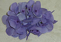 Головка цветка гортензии лавандового оттенка