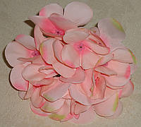 Головка цветка гортензии светло-розового