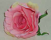 Головка розы ярко-розового цвета