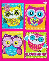 """910919 Дневник школьный жесткий (укр,) """"Owl"""""""
