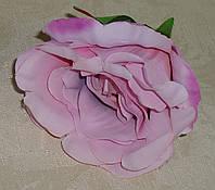 Головка розы ярко-сиреневого цвета